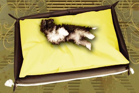 Hundebett in der Farbe Gelb