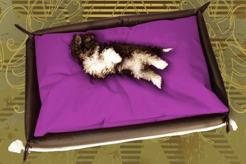 Hundebett in der Farbe Lila
