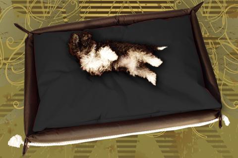 Hundebett in der Farbe Schwarz