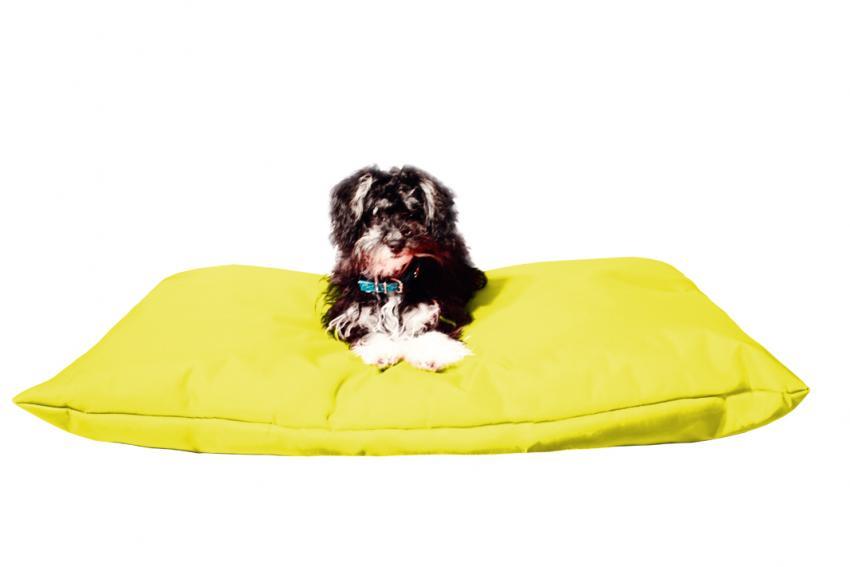 Hundekissen in der Farbe Gelb