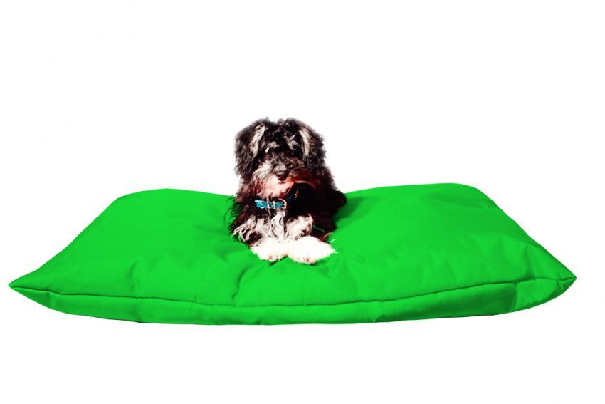 Hundebett mit Hundekissen in der Farbe Grün