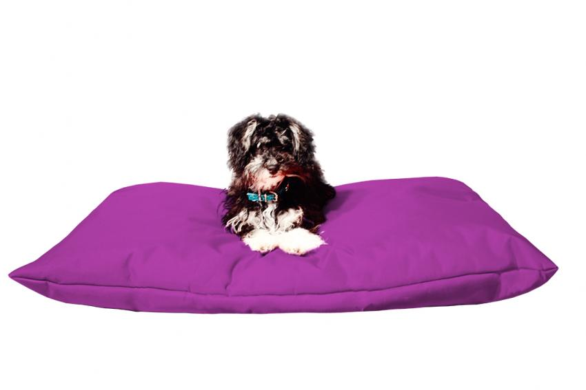 Hundebett mit Hundekissen in der Farbe lila