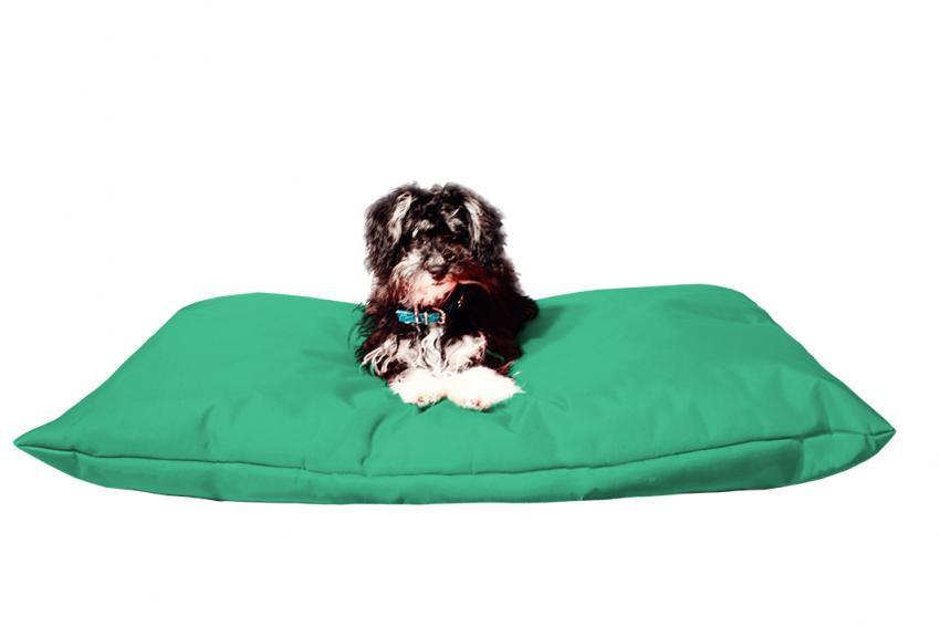 Hundebett mit Hundekissen in der Farbe minzgrün