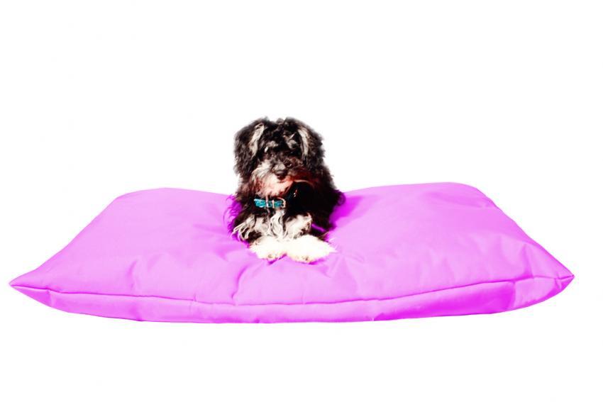 Hundebett mit Hundekissen in der Farbe Pink