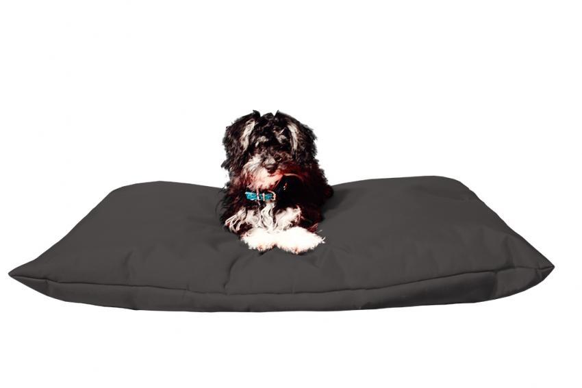 Hundebett mit Hundekissen in der Farbe Schwarz
