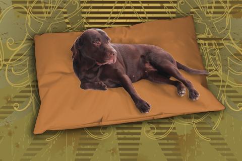 Hundekissen Doggys Flatscreen Braun XXL