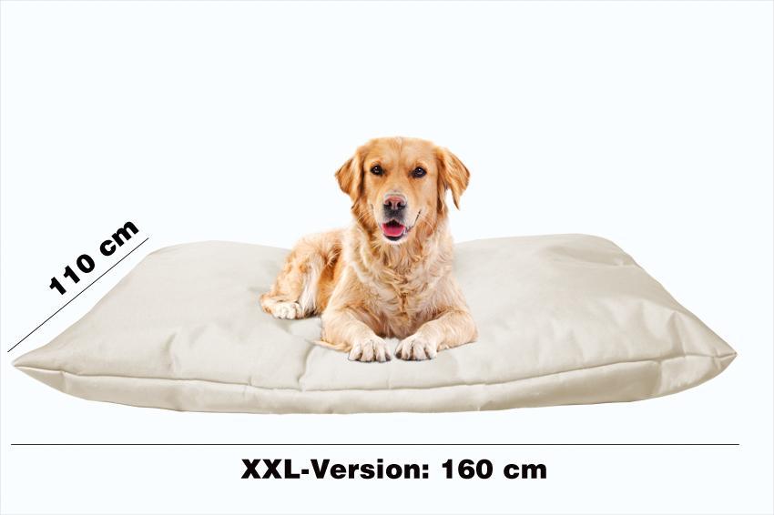 Hundekissen in der Farbe Beige XXL