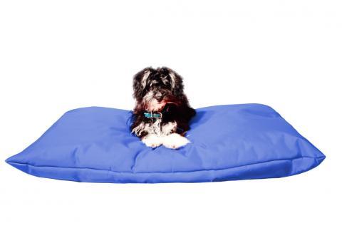 Hundekissen in der Farbe Blau