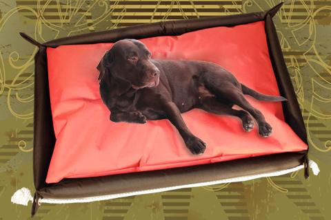 Hundebett inkl. Hundekissen in der Farbe Rot