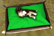 Hundebett in Hell Grün