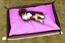 Hundebett in der Farbe Pink